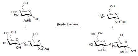 Ring closing metathesis alkyne