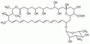 Nystatin, Streptomyces noursei - CAS 1400-61-9 - Calbiochem