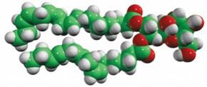 MGDG Monogalactosyldiacylglycerol (Plant), powder | Sigma ...  MGDG Monogalact...