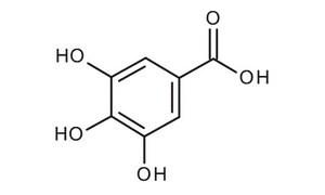 Image result for gallic acid structure jpg