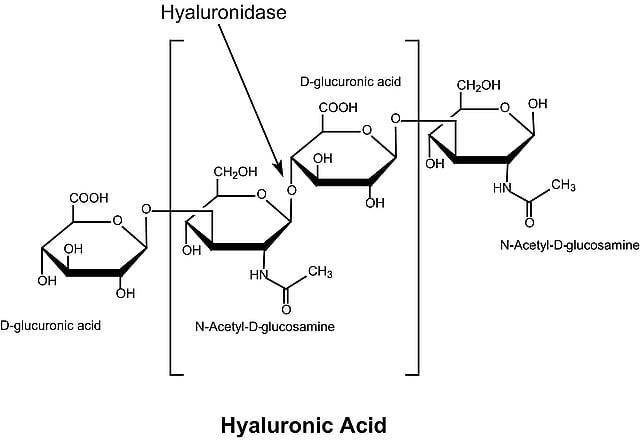 d bystolic 10 mg