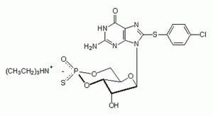 Guanosine 3ʹ,5ʹ-cyclic Monophosphorothioate, 8-(4-Chlorophenylthio)-, Rp-Isomer, Triethylammonium Salt - Calbiochem