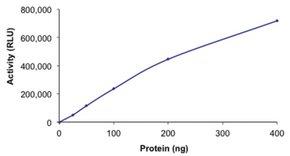 PI3K (p110-β/p85-β), active, His tagged human PRECISIO®, recombinant