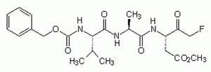 Caspase Inhibitor I - CAS 187389-52-2 - Calbiochem