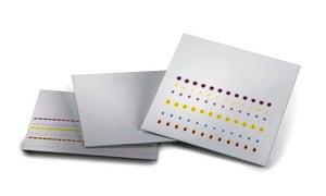Tlc Aluminium Oxide 60 F Basic Pkg Of 25 Plates Plate L W 20 Cm 20 Cm Glass Support Sigma Aldrich