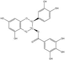 (±)-Epicatechin-2,3,4-13C3 gallate