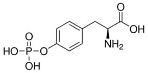 O-Phospho-L-tyrosine