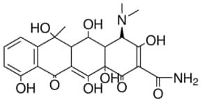 phenergan pill