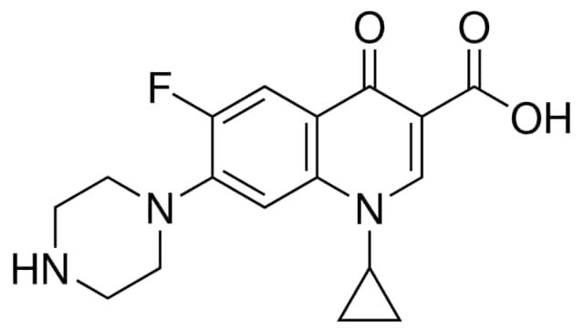clomid serophene buy