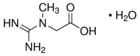 Creatine monohydrate ≥98%