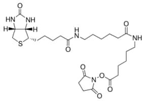 Biotinamidohexanoyl-6-aminohexanoic acid N-hydroxysuccinimide ester