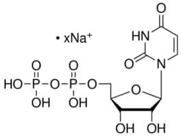 Uridine 5 trihydrogen diphosphate sodium salt from Saccharomyces cerevisiae
