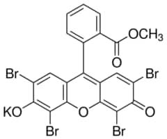 Eosin Methylene Blue According To May Grnwald