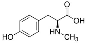 n methyl l-tyrosine benefits weight loss