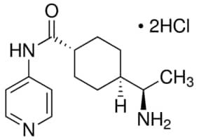 Y-27632 dihydrochloride ≥98% (HPLC)   Sigma-Aldrich