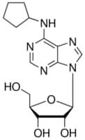 N6 Cyclopentyladenosine