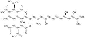 Fumonisin B1-13C34 solution
