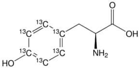 L-Tyrosine-(phenyl-13C6)