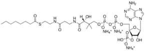 08:0 Coenzyme A,octanoyl Coenzyme A (ammonium salt), powder