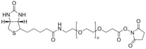 O-[2-(Biotinyl-amino)ethyl]-O′-[3-(N-succinimidyloxy)-3-oxopropyl]polyethylene glycol