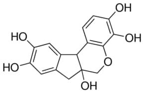 Hematoxylin Solution, Mayer's