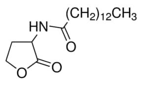 N-Tetradecanoyl-DL-homoserine lactone