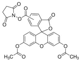 5(6)-Carboxyfluorescein diacetate N-succinimidyl ester
