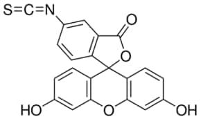 Fluorescein isothiocyanate isomer I