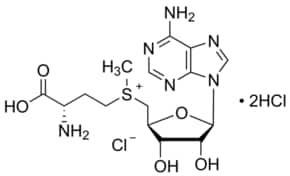 Denamarin Chewable Tablets for Animal Use  Drugscom