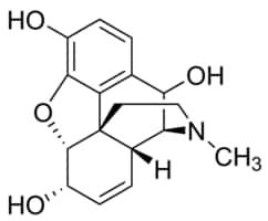 10-Hydroxymorphine solution