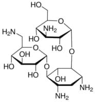 Kanamycin solution from Streptomyces kanamyceticus