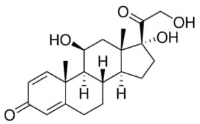 lantus overdose