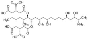 Fumonisin B1 from Fusarium moniliforme